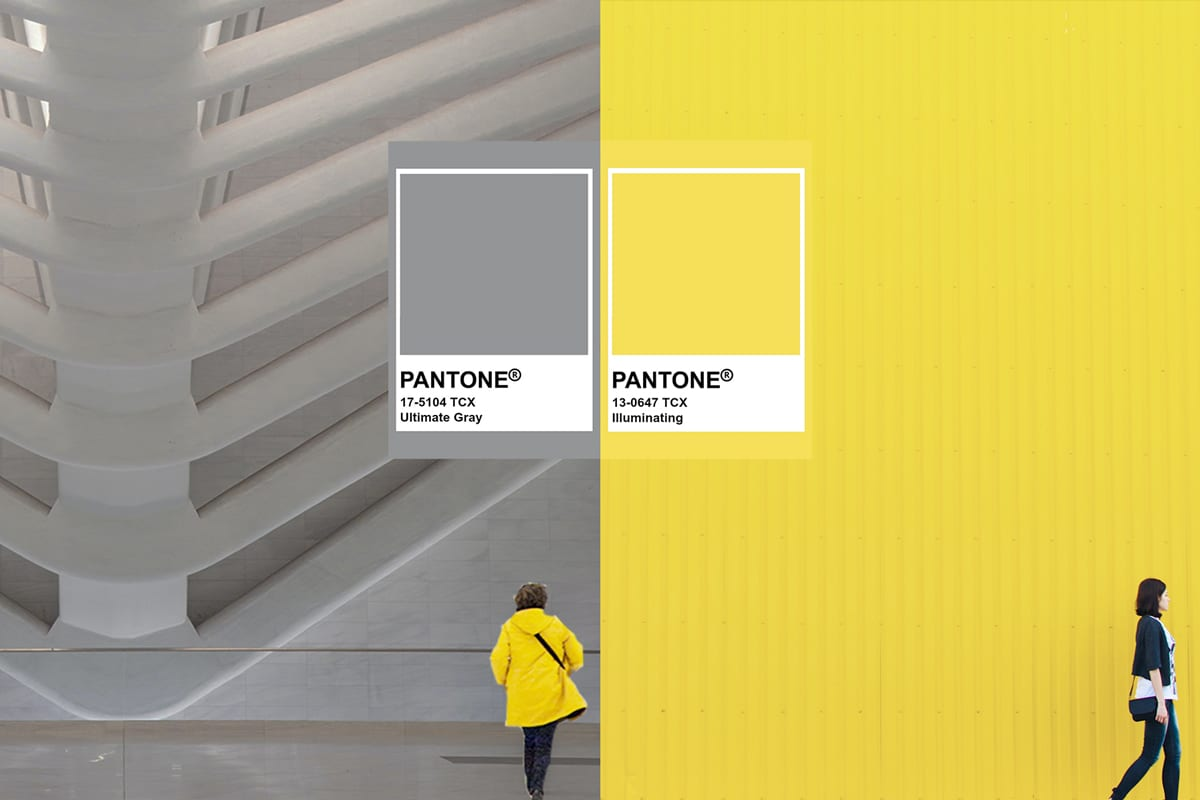 New Year, New Colours, New Branding